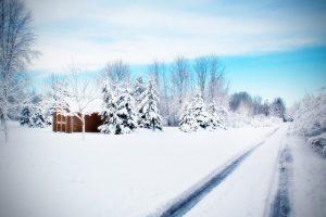 road-584386_640