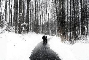 walking-364152_640